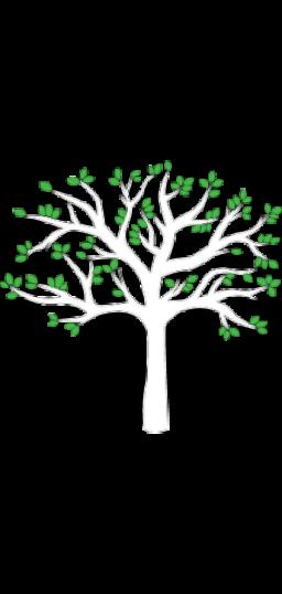 Tree2a2222
